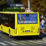Реклама на задніх вікнах автобуса